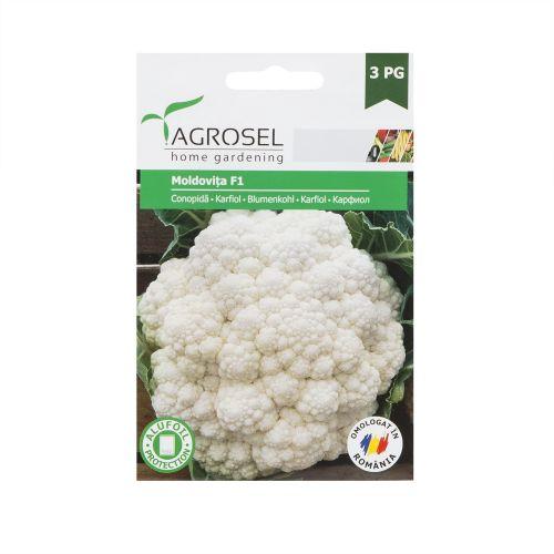 Seminte conopida Moldovita