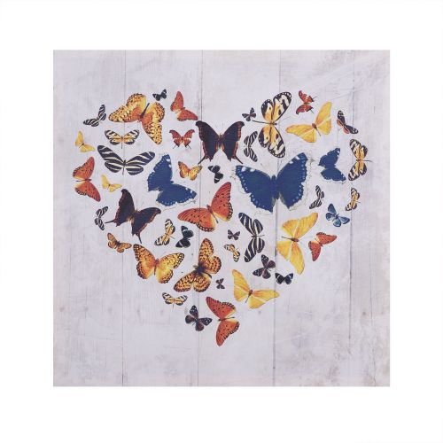 canvas inima fluturi