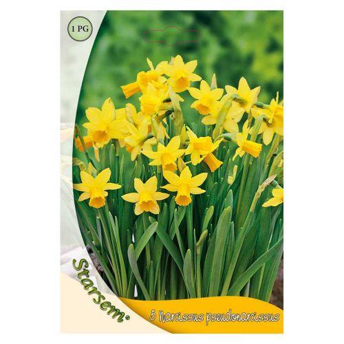 Bulbi Narcisa tete-a-tete 5 bucati