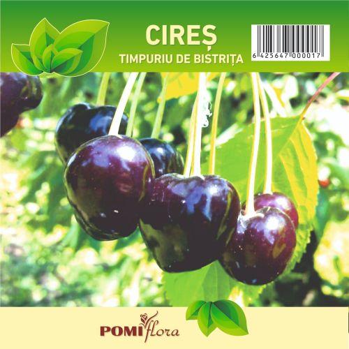 Pom fructifer cires