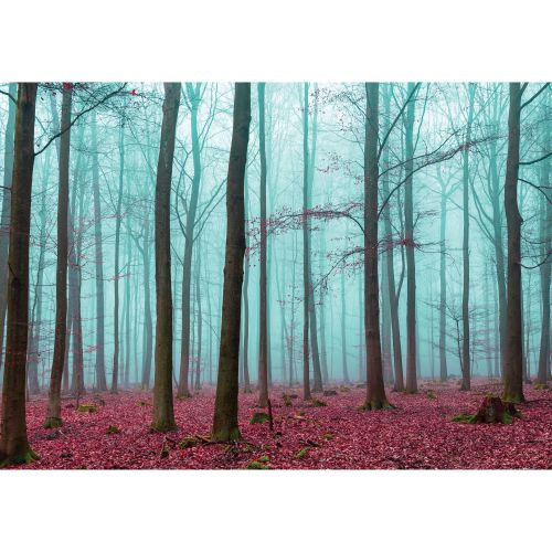 "Fototapet hartie, 2.54 x 1.84m, ""Pink forest"""