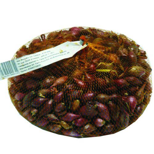 Arpagic rosu, piroska, 8-14 mm 450 g